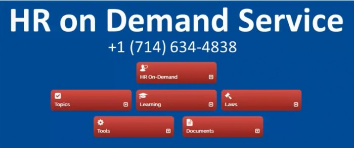 HR on Demand Service for Small Businesses